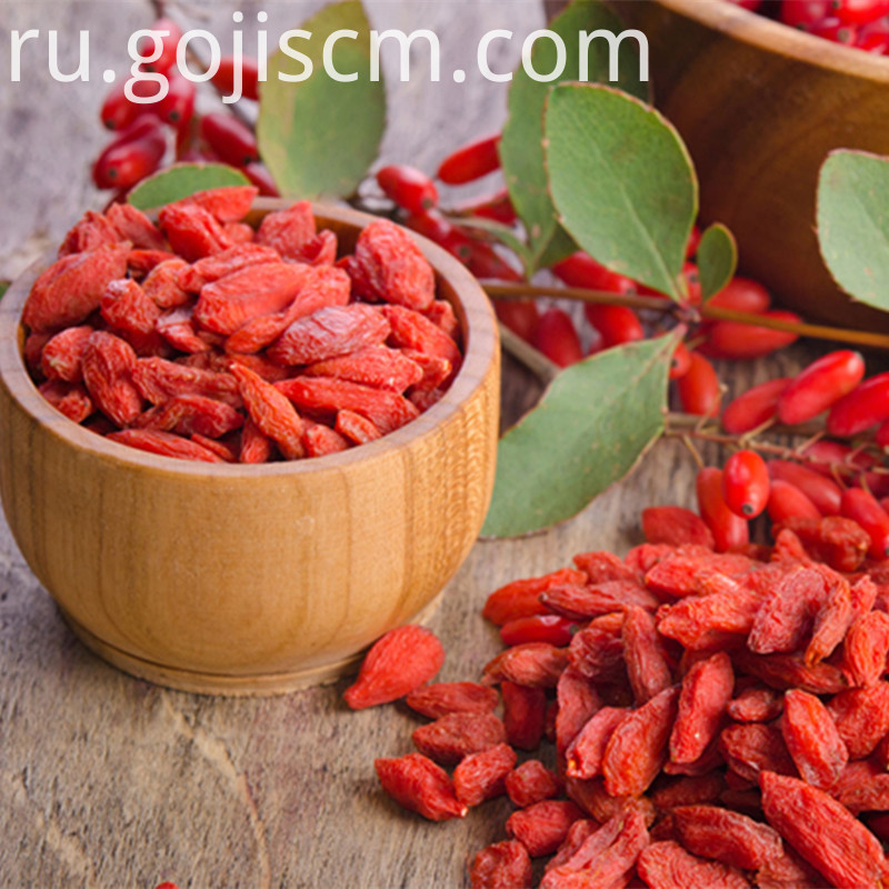 Fresh & dried Vitamin Goji Berry